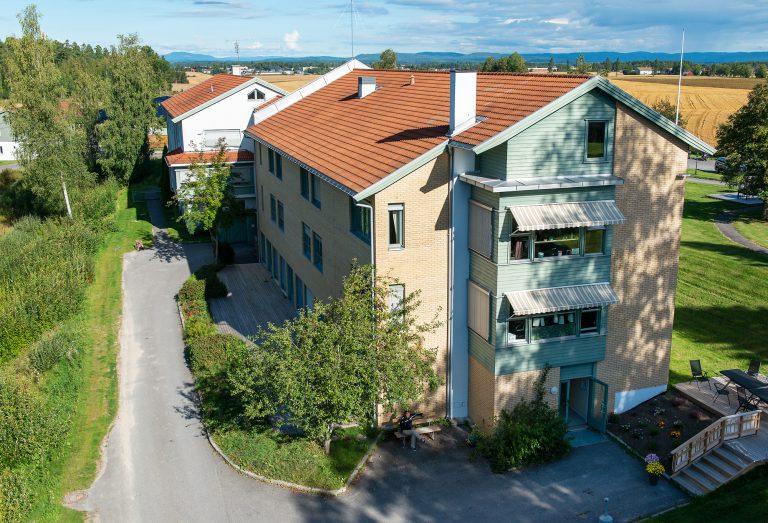 Furukollen, Årnes